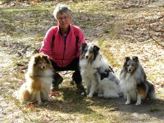 Lady with her Shelties at a National Park