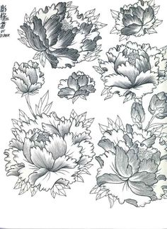 Japanese Flowers Tattoo Designs