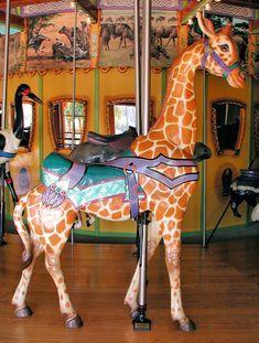 The Toledo Zoo African Carousel Giraffe © Mark Nance