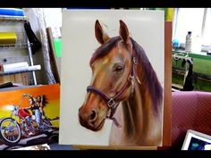 Drawing a Horse with Colored Pencils - Speed Draw | Jasmina Susak - YouTube