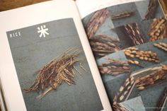 A page from NORAH #3 - Winter 2013 - CRAFT issue / Japanese magazine on natural and organic lifestyle from UGUiSU Online Store