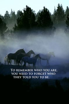 To remember who you are, you need to forget who they told you to be. ~ Wisdom!