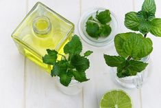 This article covers some peppermint essential oil recipes meant specifically for pain relief. Therapeutic Grade Essential Oils, Best Essential Oils, Peppermint Oil Benefits, Troubles Digestifs, Plant Therapy, Lemon Balm, Hair Growth Oil, Natural Living, Superfoods
