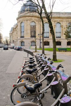 The Velib rental bike system is an example of bicycle culture in Paris