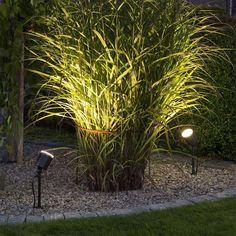 AMALFI 7648 Landscape Spotlight With Transformer from the Garden Lighting Shop - Specialists in all aspects of Garden Lighting solutions. Garden Spotlights, Landscape Lighting, Park Lighting, Outdoor Lighting, Back Garden Design, Flavio, Modern Backyard, Outdoor Landscaping, Gardens