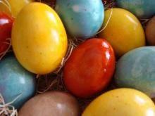 Barvíme vajíčka přírodně a hravě | Bio A-Z