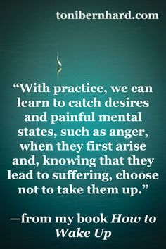 """We can learn to catch painful mental states when they first arise and choose not to take them up…"""
