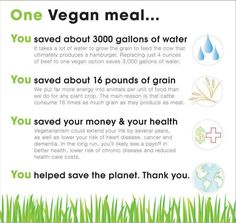 Vegan can save you money & the planet