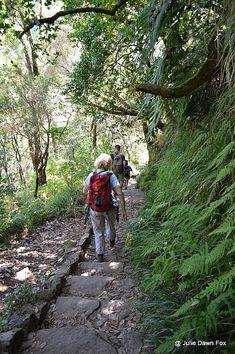 Steps to 25 Fontes, Madeira