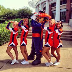 Delta Gamma at University of Virginia #DeltaGamma #DG #cheer #sorority