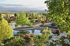 View over the Water Garden at Mayfield, Australia.  #DESTINATIONMAYFIELD