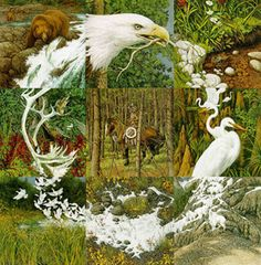 """""""The sacred circle is the circle of life; the delicate thread that unites all living things. Only man knowingly holds the thread. Of all the animals, only he has the intelligence to protect and preserve it. Only he can be the keeper of the sacred circle."""" - Bev Doolittle"""