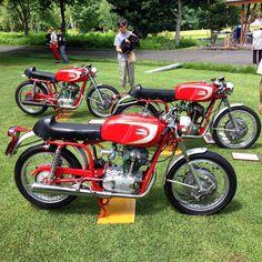 Ducati x 3 Ducati Motorcycles, Cars And Motorcycles, Ducati Cafe Racer, Ac Cobra, Old Bikes, Biker Chick, Street Bikes, Motorbikes, Random