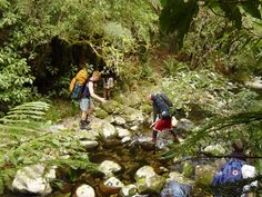 Capernwary New Zealand Adventure Bible School (ABS) - various activities, 6 weeks