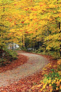 27 best green mountains vermont images burlington vermont new rh pinterest com