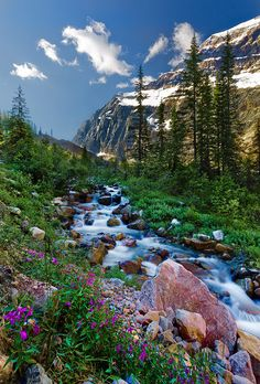 Ambling stream/ waterfall in Jasper National Park Beautiful World, Beautiful Places, Beautiful Scenery, Amazing Places, Terre Nature, Landscape Photography, Nature Photography, Travel Photography, Nature Pictures