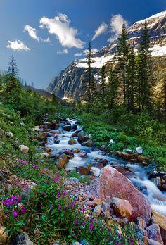 Las cualidades de Jehová se ven en su creación. Jasper National Park SB