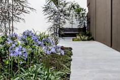 19 jardins pequenos e fáceis de copiar em casa! https://www.homify.com.br/livros_de_ideias/2910071