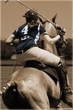 Mark Crislip Photography - I really want to try playing polo. The Newport, RI polo club teaches lessons!