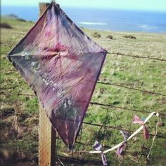 Someone tie dyed a kite.beautiful.