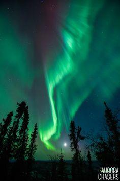 Northern Lights Aurora Photograhy Tours in Fairbanks, Alaska
