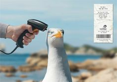 Surfrider Foundation: Barcode scanner, 2 Advertising Agency: Young & Rubicam, Paris, France