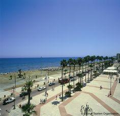 "Cyprus Larnaka Promenade ""Phinikoudes"""