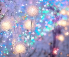 _xxrnpq_ | via Tumblr uploaded by ⑅⑅✩ͬ✩ͥ✩ͪ✩ͦ⑅⑅ Holiday Lights, Christmas Lights, Outer Space, Find Image, Blue Green, Tumblr, Wallpaper, Flowers, Art