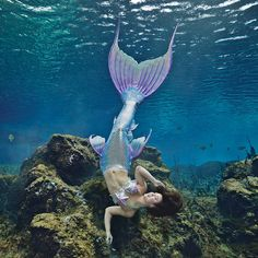Photography by Andrew Brusso. Fantasy Mermaids, Unicorns And Mermaids, Real Mermaids, Mermaids And Mermen, Pretty Mermaids, Mermaid Pose, Mermaid Fairy, Tattoo Mermaid, Weeki Wachee Mermaids