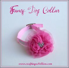 Crafting Rebellion: Fancy Dog Collar For Molly Fancy Dog Collars, Girl Dog Collars, Diy Dog Collar, Pet Collars, Dog Training Methods, Basic Dog Training, Training Dogs, Pet Christmas Presents, Easiest Dogs To Train