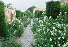 flowering borders- Jinny Blom - Cotswolds garden (April 2011 issue of Veranda)