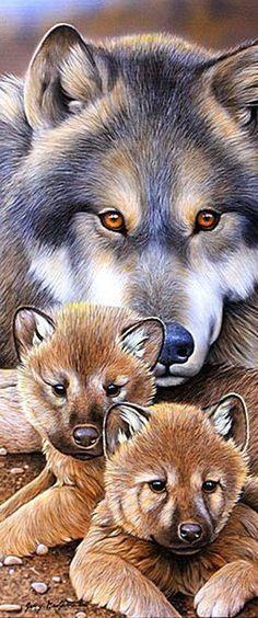волчица и волчата ,