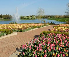 <p>Looking for a colorful escape? These global gardens are among the most spectacular, inspiring -- and fragrant! -- spots on Earth.</p>