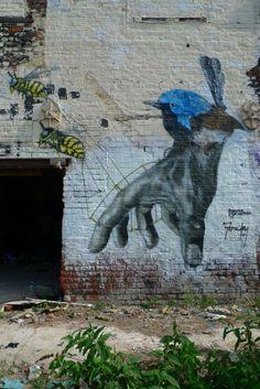Graffiti Street Artist Faunagraphic Nature Murals And Environmentally Friendly Artwork Art Design Illustration