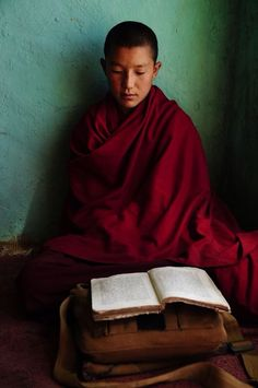novice Buddhist monk studying