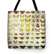 Tote bag,american butterflies,species,identify,identification,types,colors,families,names,
