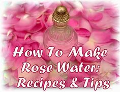 061114 wild rose ~ Tips for Healthy Life: How To Make Rose Water: Recipes & Tips