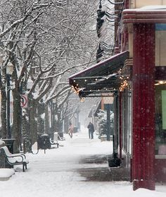 Royal Oak Michigan Still Pretty Even In The Winter