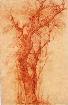 pierre-henri de valenciennes  (1750-1819) - etude d'arbre au bois de boulogne, sanguine.