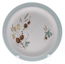 Alfred  Meakin - Alfred Meakin Charnwod -  Alfred Meakin Charnwood  Tea Plate