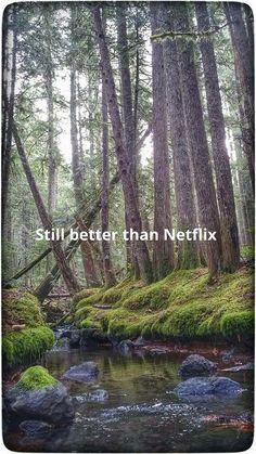 Better than Netflix