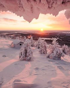 Pink winter sun, Levi, Lapland, Finland