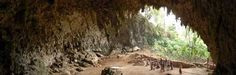 Liang Bua Cave is situated on the island of Flores, Indonesia. Here, in the remains of the extinct species Homo floresiensis (nicknamed 'hobbit') were. Cave Animals, Homo Floresiensis, Homo Habilis, Archaeology News, Human Evolution, Out Of Africa, Palawan, The Hobbit, Science Nature