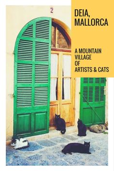 Mallorca Travel Tips: The Mountain Village of Deia in Mallorca is a close-knit community consisting of artists and cats. Click here to find out more about this top Mallorca destination: http://www.traveling-cats.com/2015/03/cats-from-deia-mallorca.html (M