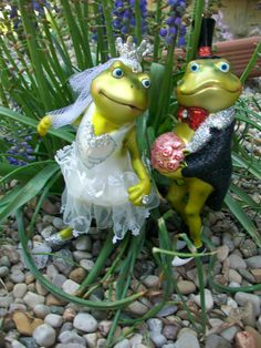 glass frog cake topper just to funny Funny Frogs, Cute Frogs, Frog Costume, Frog Cakes, Glass Frog, Frog Art, Christmas Ornaments To Make, Frog And Toad, Hippie Art