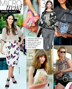 <3  : Animal Planet   Celebrity Style And Fashion From WhoWhatWear