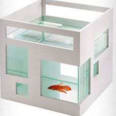 Fish tank-- oh, amazing design. If I didn't have cats....  http://www.shopplasticland.com/store/merchant.mvc?Screen=PROD&Product_Code=P00819018&Category_Code=New-Arrivals