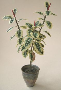 1/12th scale variegated rubber tree by Bev Gallerani, IGMA Fellow, 'planted' in in a wheel-thrown pot by Carol Mann.  Each leaf was individually hand-cut and painted.  Five inches tall.