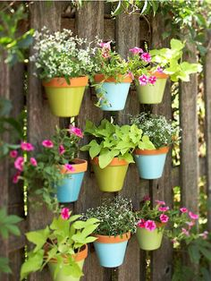 ECO Garden Ideas