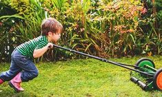 Article: How to flatten your lumpy lawn. From the lawn care board